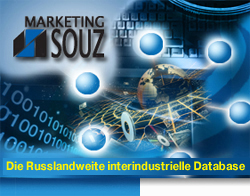 Die Russlandweite interindustrielle Database. Marketing Souz.